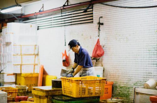 Minifaenes: les clavegueres del mercat laboral