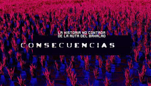 10. Consecuencias (a partir de 1995)